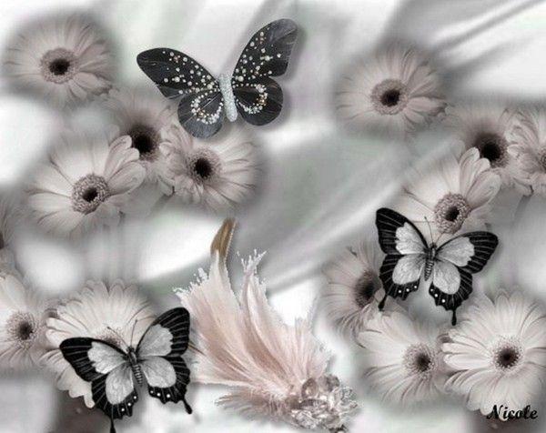 Un fond d 39 ecran noir et blanc - Tapisserie rayee noir et blanc ...