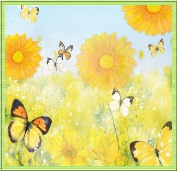 fond d 39 ecran fleurs jaunes et papillons. Black Bedroom Furniture Sets. Home Design Ideas