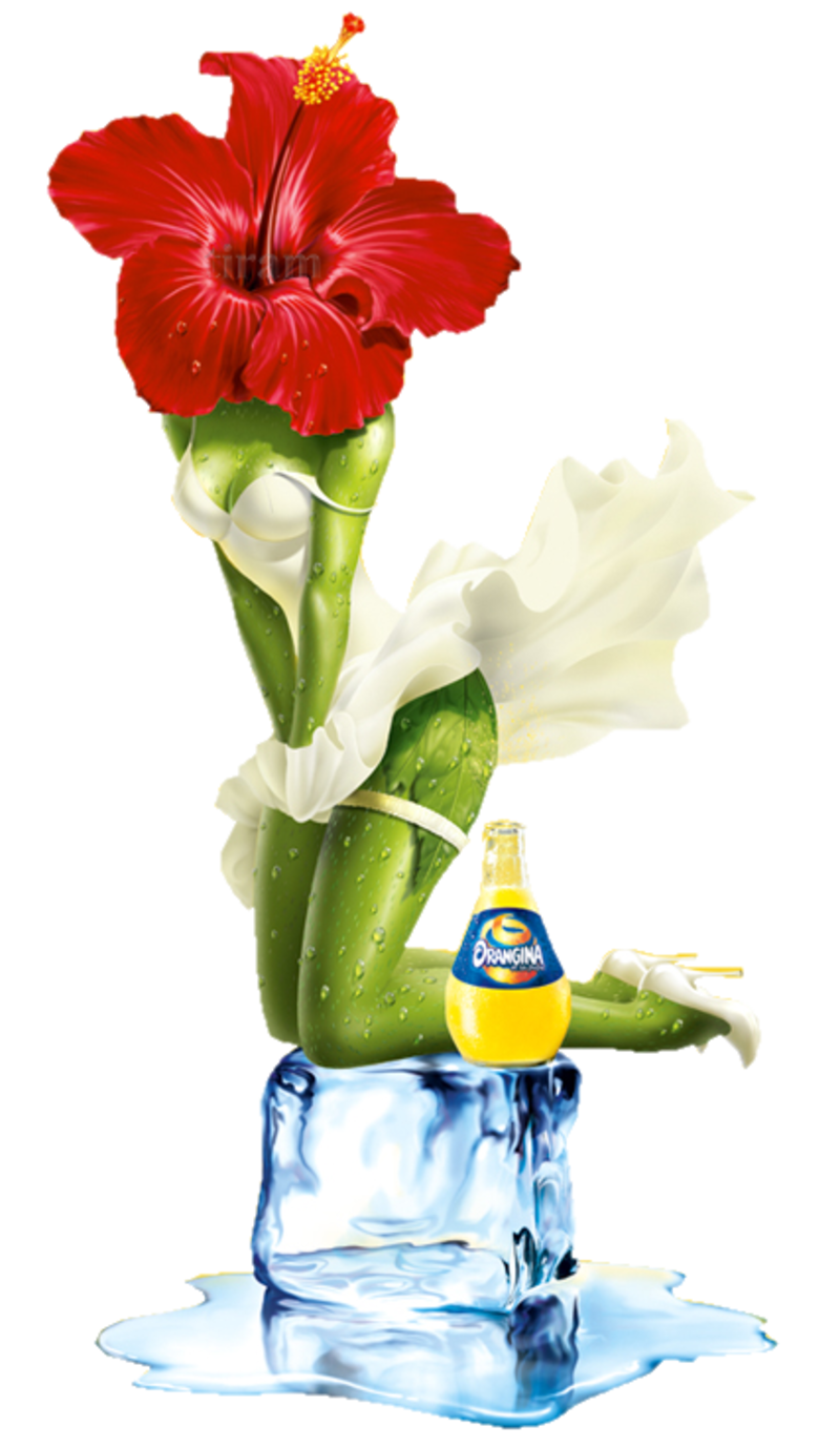 A une fleur poésie 947218orangina_fondecran_ibiscus_1280
